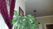 2011-11-08_21-04-38_550