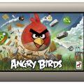 19_AngryBirds