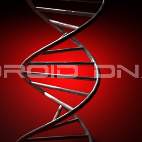 "Droid DNA render leaks with word of ""early December"" release"
