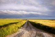 ireland_landscape