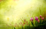spring_wallpaper05