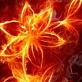 fire3-720x380