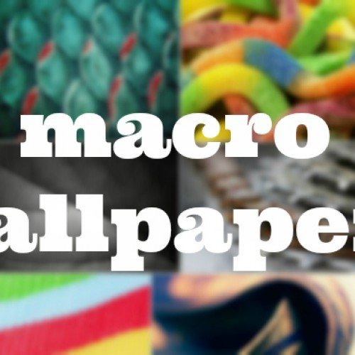 Macro-themed wallpapers for your Android