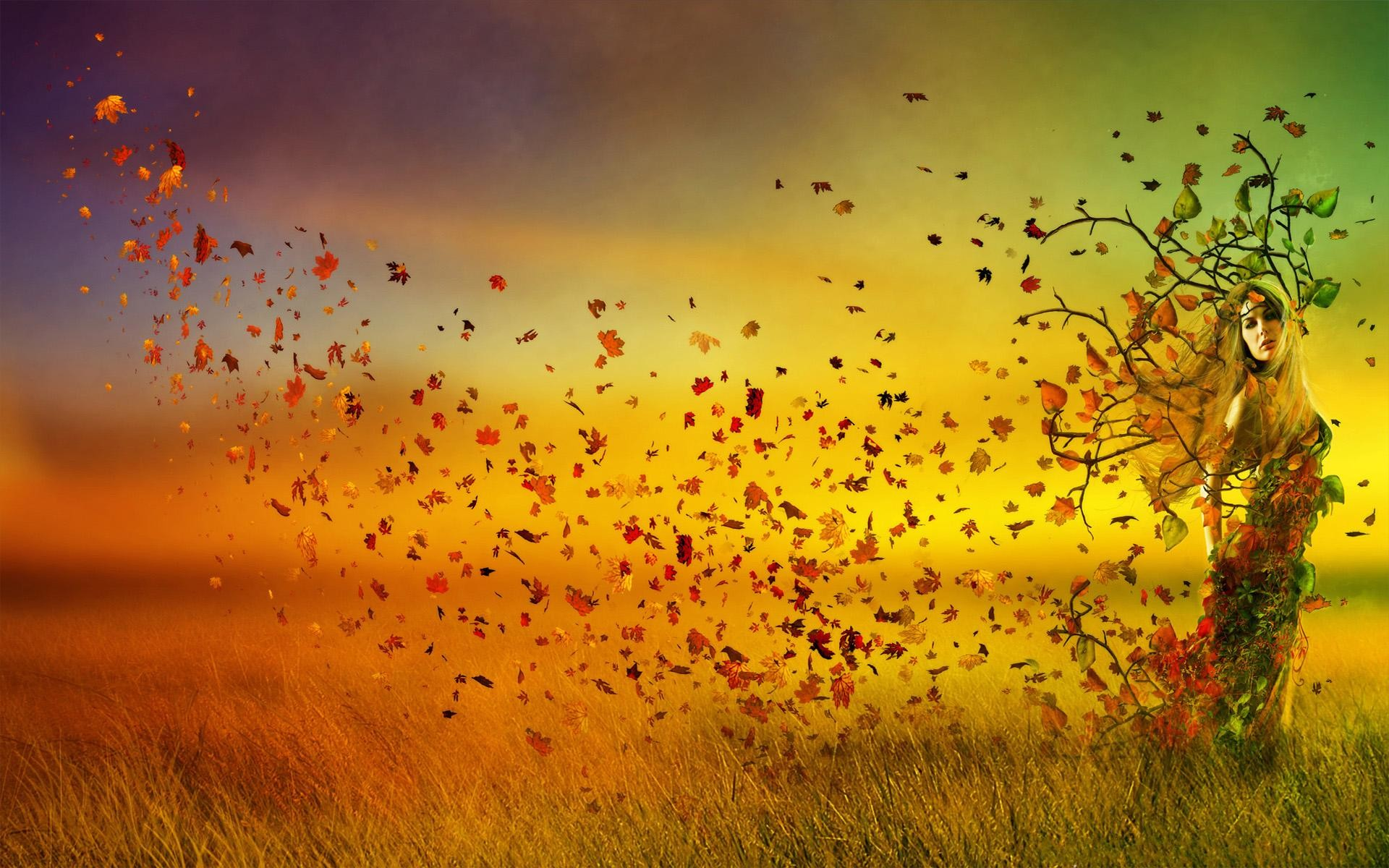 about this theme this collection of wallpapers is based around the common theme of autumn why because were officially into the fall season and things