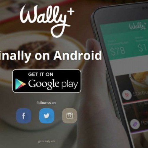 Manage your personal finances with Wally!