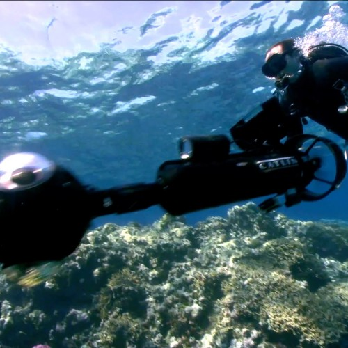 Google Street View takes to the undersea