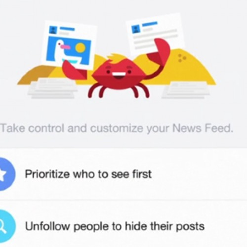 Facebook update lets users customize news feed preferences