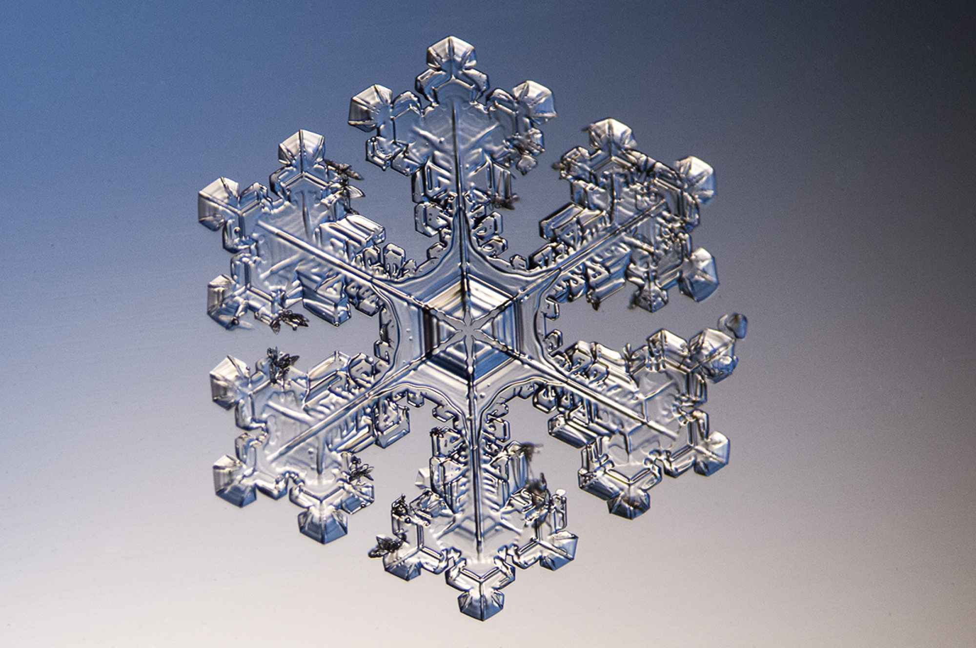 32 QHD(1440p) and HD(1080p) snowflake wallpapers in time for the holidays