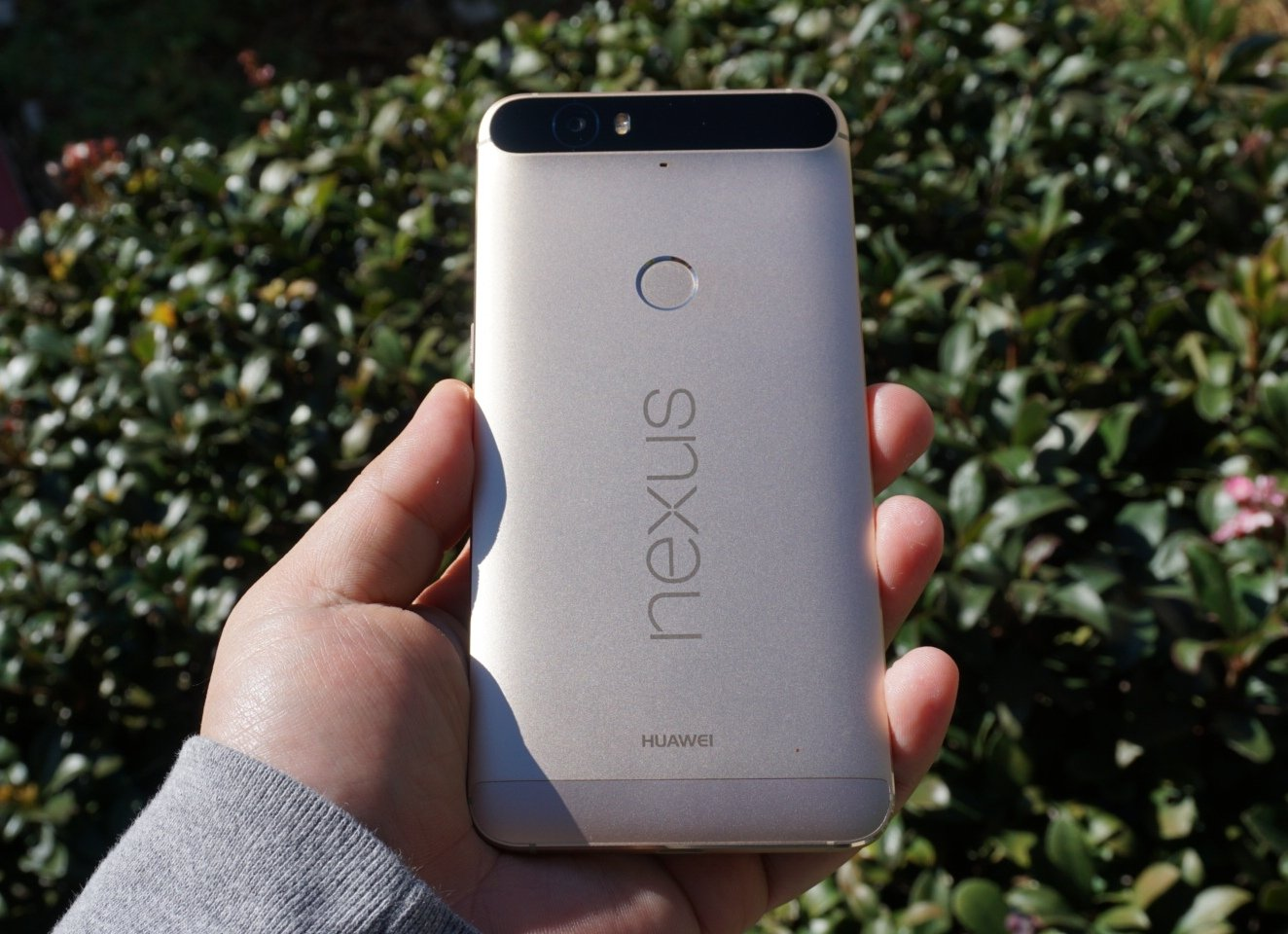 The gold Huawei Nexus 6P