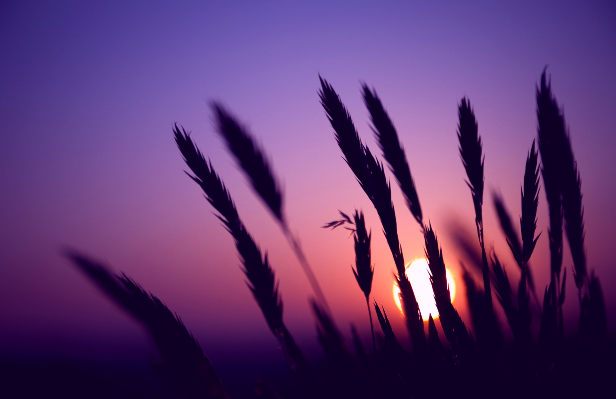29 Amazing HD and QHD sunset wallpapers AndroidGuys