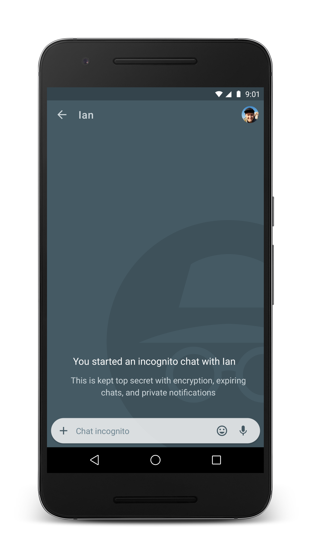 Как сделать режим инкогнито на айфон