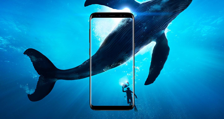 Samsung Galaxy S8 Vs Oneplus 3t Smartphone Showdown