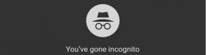 Chrome Incognito Logo