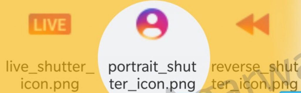 instagram portrait mode icon