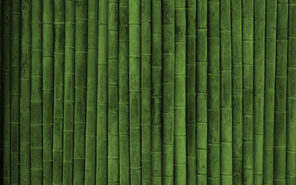 bamboo-wall-photography-hd-wallpaper-2560x1600-6080