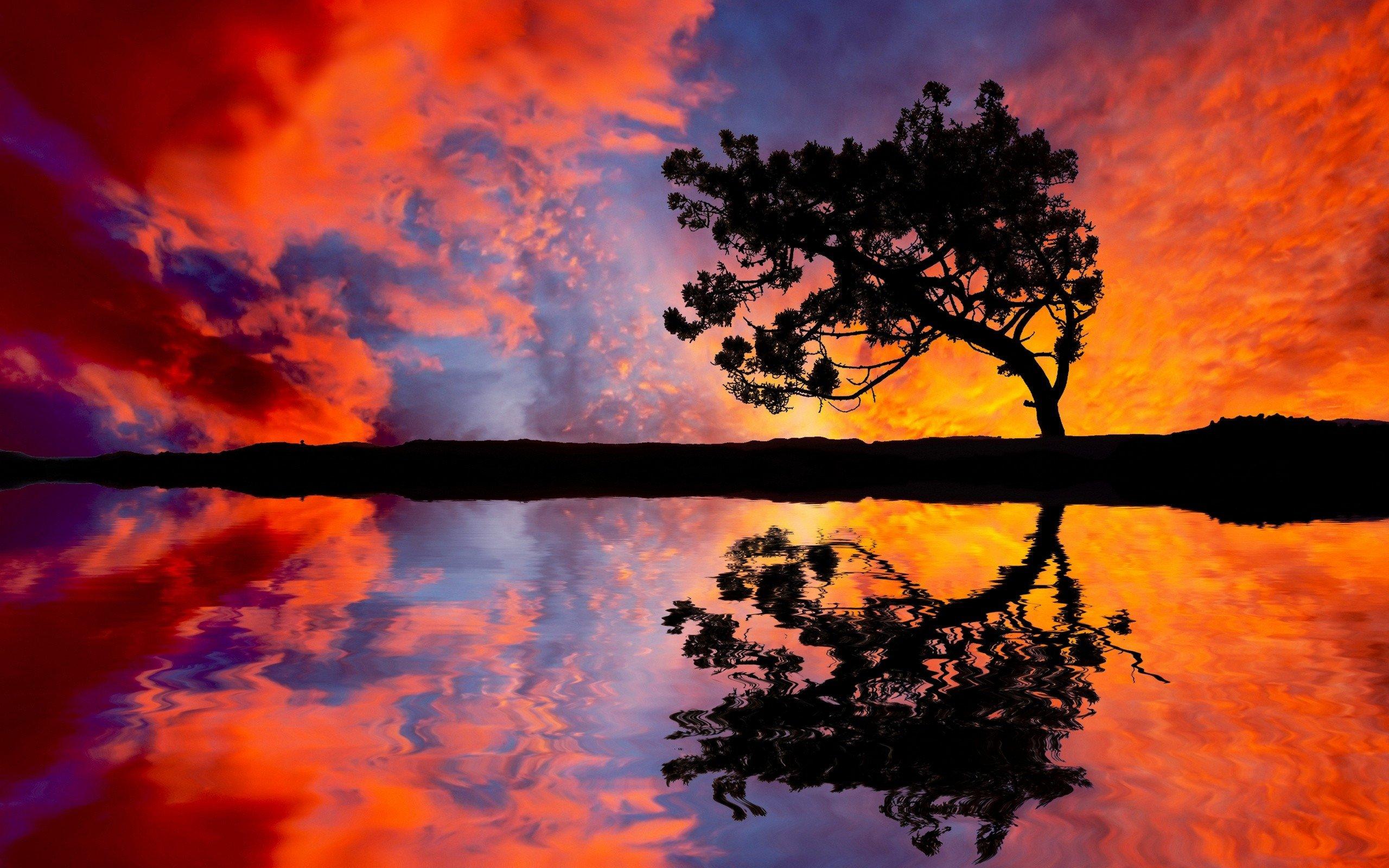 6944719-tree-sunset-reflection