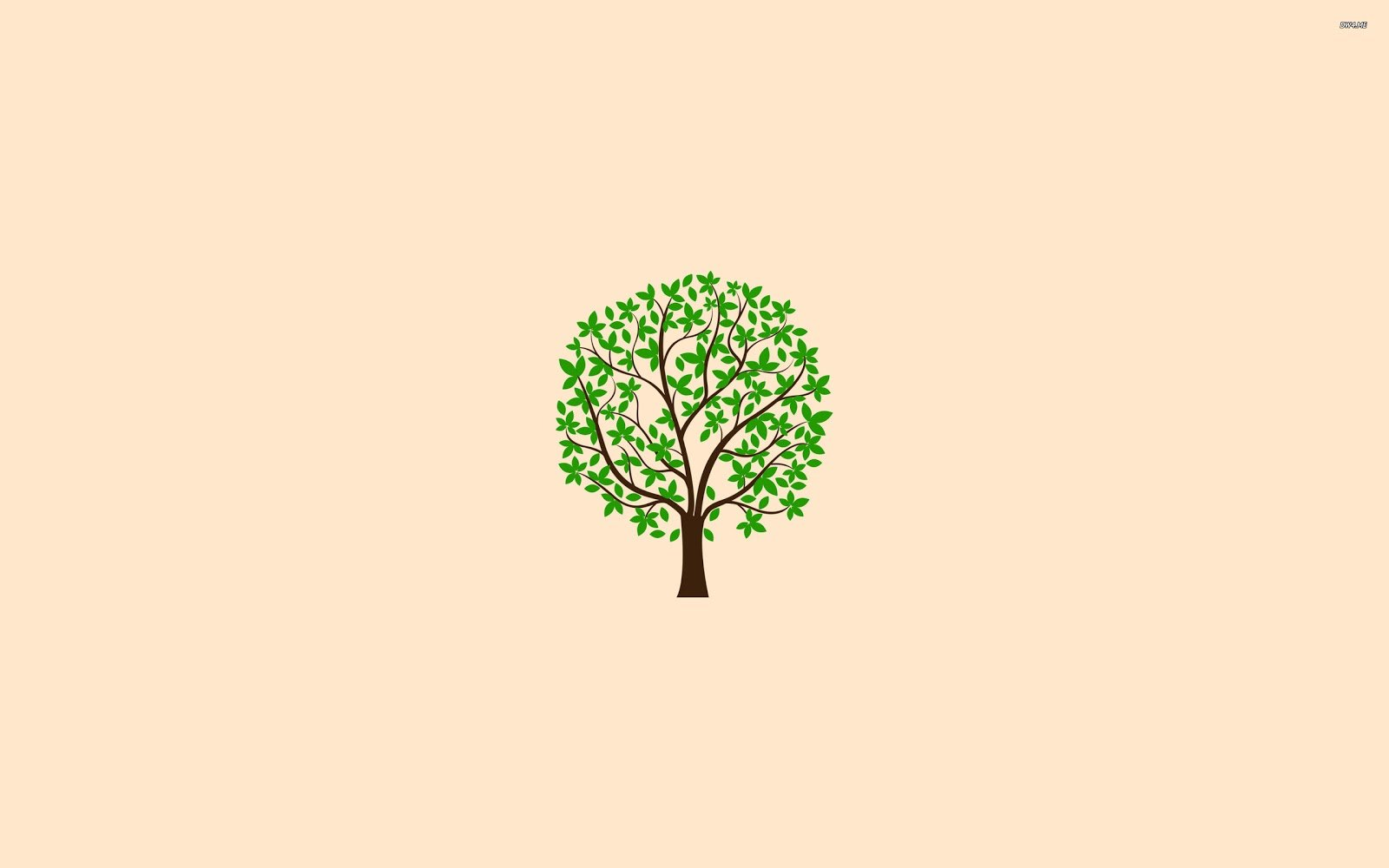 1231 spring tree 2560x1600 minimalistic wallpaper