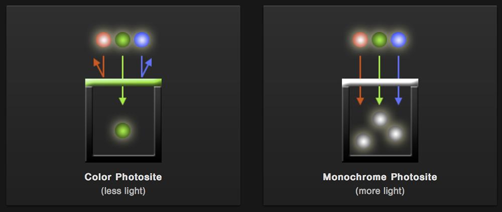 monochrome sensor