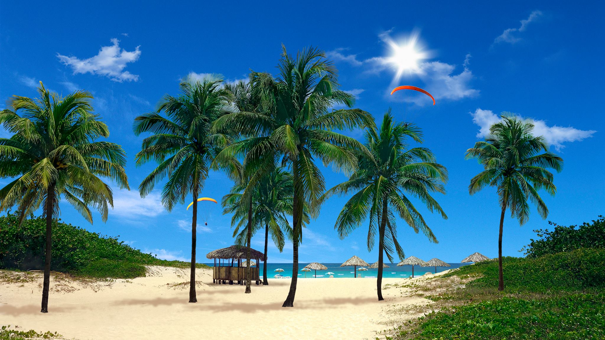 real snowfall & beach palms 3d are two live wallpapers to spruce up