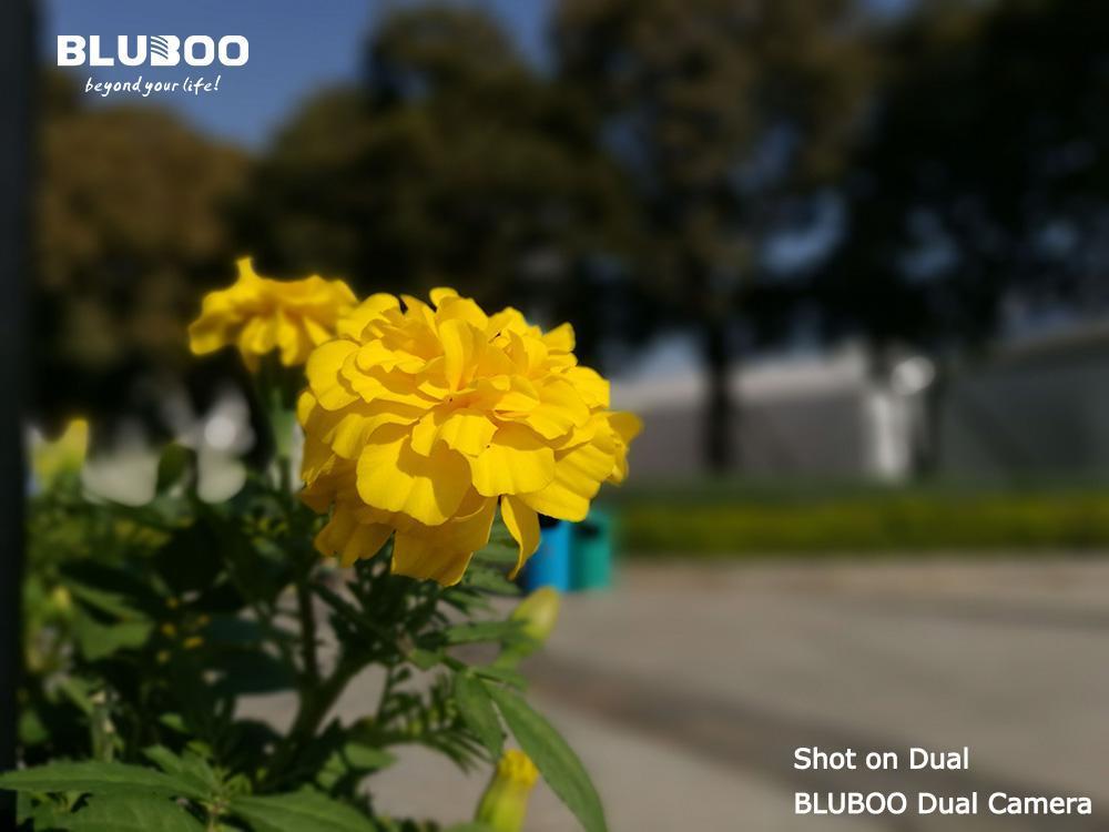 bluboo_dual_sample1