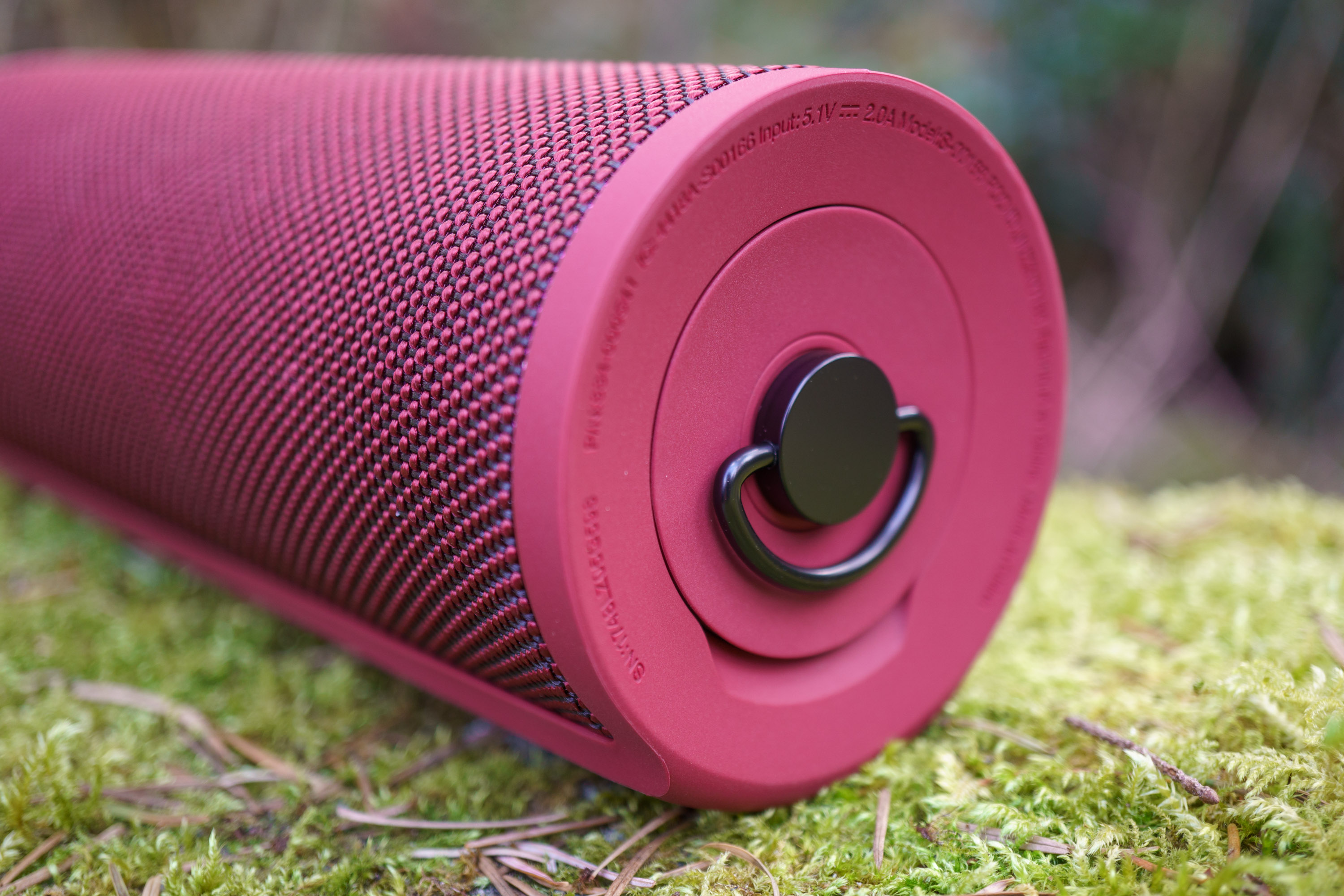 UE Blast Wireless Speaker
